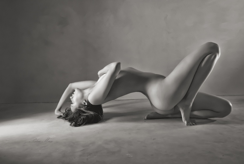 Blue Muse Fine Art on Art Nude Today